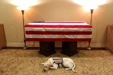 Misi Bantu Mendiang George HW Bush Selesai, Bagaimana Nasib Sully?