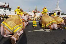 Ketika 10 Gajah Putih Bersujud di Depan Potret Raja Thailand