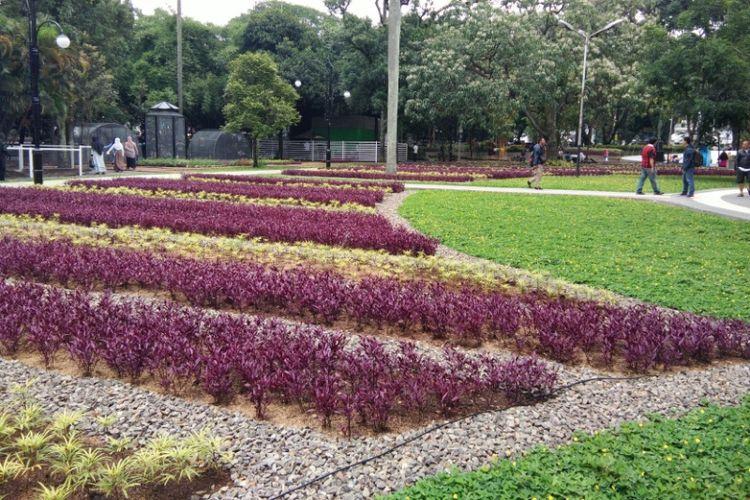 Bunga berwarna-warni menghampar di Taman Dewi Sartika, Balai Kota Bandung, Jalan Wastukancana. Taman tersebut resmi dibuka untuk umum mulai hari ini, Selasa (19/12/2017).