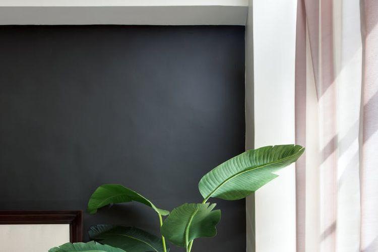 Bagian tepi dan sisi pada batas tembok dicat warna hitam matte sebagai finishing.