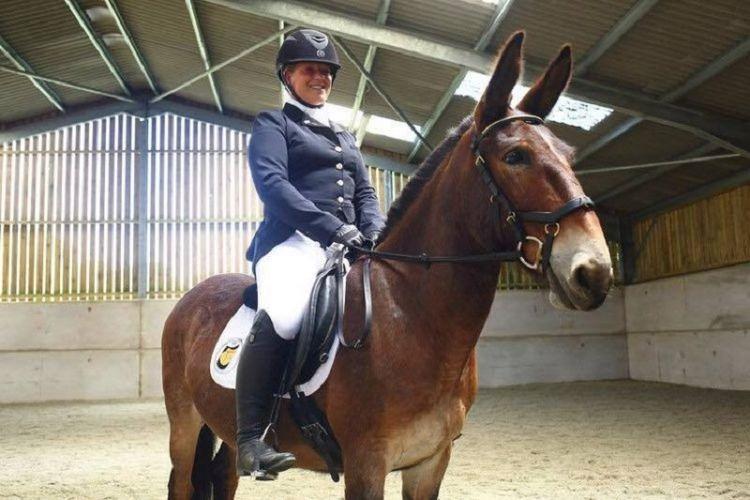 Wallace the Great dan penunggang sekaligus pelatihnya, Christie Mclean. Wallace menjadi peranakan keledai-kuda pertama yang memenangkan kompetisi tunggang serasi (dressage) di Inggris Minggu (22/7/2018).