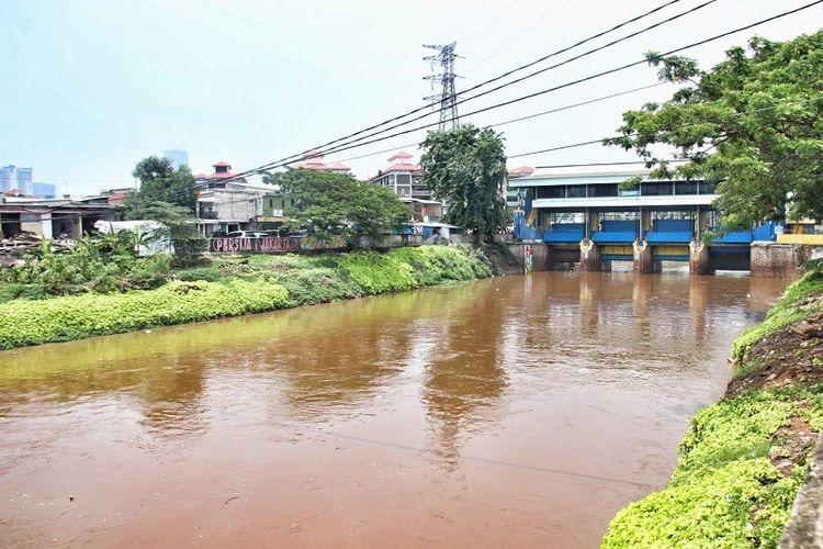 Sepanjang tahun 2013-2017, normalisasi Sungai Ciliwung telah dilakukan sepanjang 16,38 kilometer dari panjang sungai yang harus dinormalisasi sekitar33,69 kilometer.
