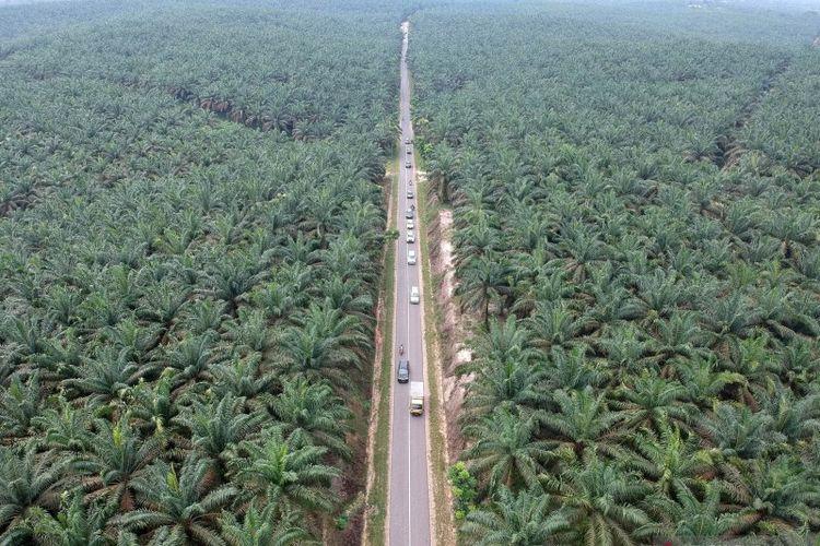 Foto udara jalur alternatif mudik lintas barat Jambi-Sumbar di Petajen, Bajubang, Batanghari, Jambi, Senin (20/5/2019).