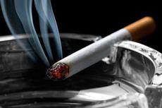 Penerimaan Cukai Tembakau Terus Meningkat