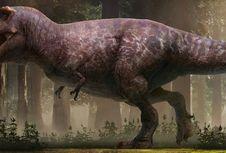 Gembul dan Tak Berbulu, Inilah Wujud T-rex yang Sebenarnya