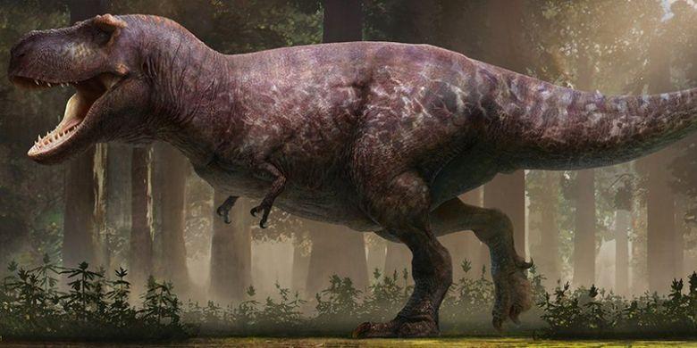 Gembul Dan Tak Berbulu Inilah Wujud T Rex Yang Sebenarnya