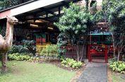 7 Wisata Murah Meriah di Bogor, Ada Yang Gratis Tiket Masuk