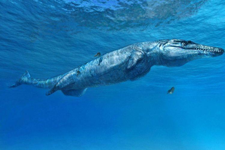 Leldraan melkshamensis?atau dikenal juga sebagai Monster Melksham?sangat mirip dengan spesies yang ditunjukkan dalam ilustrasi ini (Plesiosuchus manselii), yang juga termasuk dalam kelompok Geosaurini.