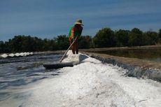 Menperin Tegaskan Impor Garam untuk Kebutuhan Bahan Baku Industri