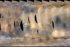 Badai Debu Mars Hantam Robot Penjelajah Milik NASA