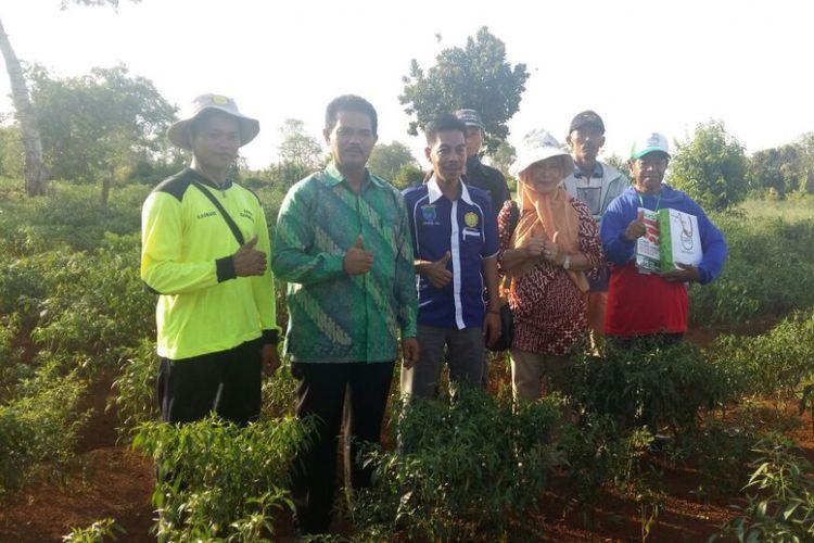Kementerian Pertanian memantau produksi cabai di Provinsi Sumatera Selatan menjelang bulan Ramadhan. Produksi cabai Sumatera Selatan dipasok ke Pasar Induk Jakabaring dan pasar lainnya di Pulau Sumatera.