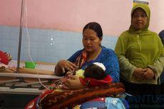 Bayi 40 Hari Jadi Korban Serangan Kera Liar di Probolinggo