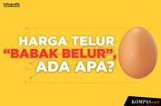 INFOGRAFIK: Harga Telur 'Babak Belur', Ada Apa?