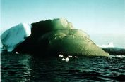 Terungkap, Penyebab Beberapa Gunung Es di Antartika Berwarna Hijau
