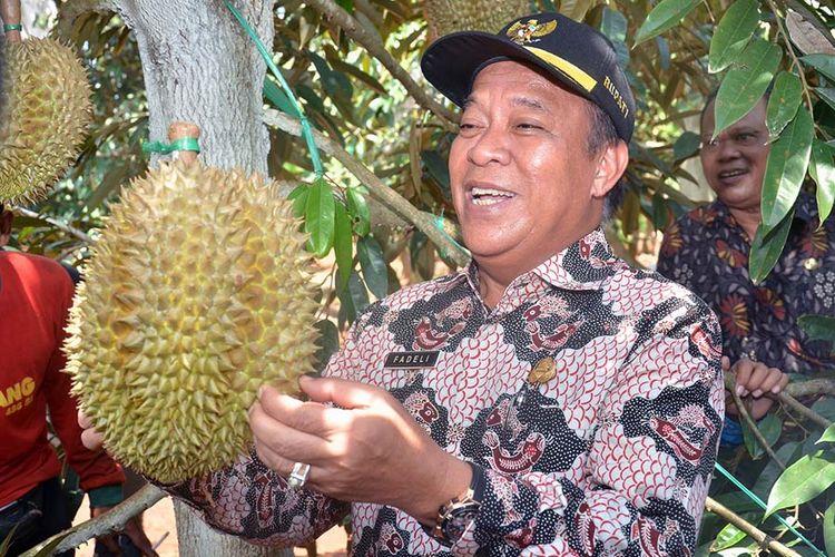 Bupati Lamongan Fadeli, saat melihat durian jenis montong yang ditanam di Desa Sugihan, Kecamatan Solokuro, Lamongan.