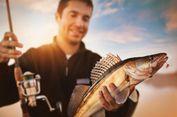 4 Persiapan Penting Sebelum Memancing Ikan