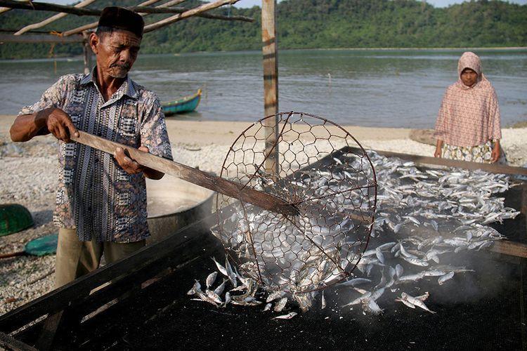 Anwar, warga Desa Layeun, Kecamatan Lhok Seudu, Kabupaten Aceh Besar, sedang mengolah ikan segar menjadi ikan asin, Minggu (25/3/2018). Ikan segar yang dibeli langsung dari hasil tangkapan nelayan Lhok Seudu diolah menjadi ikan asin yang nantinya akan dipasarkan ke Medan, Padang, dan sejumlah daerah di Aceh dengan harga berkisar Rp 30 hingga Rp 40 ribu per kilogramnya.