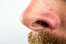 Ilmuwan Jerman Bikin Hidung Buatan untuk 'Smartphone', Apa Fungsinya?