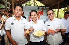 Di Banyuwangi, Menteri Rini Pesta Durian Merah