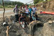 Peneliti ITB Temukan Fosil Gading Stegodon Berumur 1,5 Juta Tahun