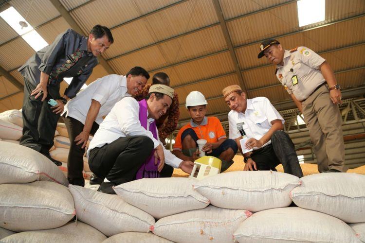 Menteri Pertanian, Andi Amran Sulaiman, menargetkan ekspor jagung komposit sebesar 500.000 ton pada 2018.