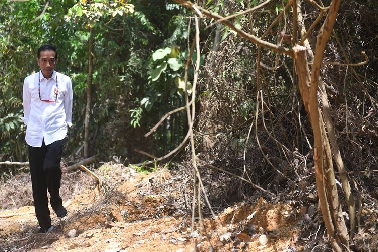 Presiden Joko Widodo berjalan di kawasan hutan saat meninjau salah satu lokasi calon ibu kota negara di Gunung Mas, Kalimantan Tengah, Rabu (8/5/2019). ANTARA FOTO/Akbar Nugroho Gumay/foc.