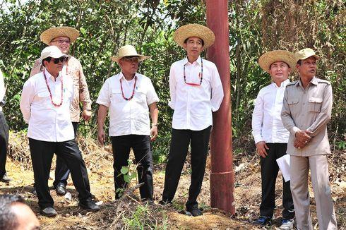 Pemerintah Siapkan 10 Wilayah Metropolitan Penopang Ibu Kota Baru