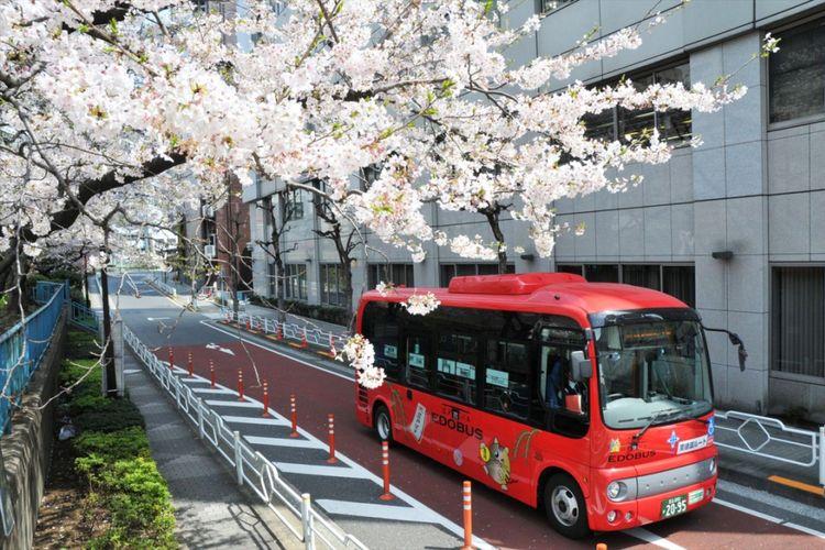 Edo Bus