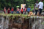 WWF Teliti Ikan Mirip Hiu di Lokasi Banjir Bandang Jayapura