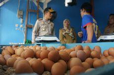 Harga Telur dan Ayam Masih Mahal, Apakah Ada Penimbunan?