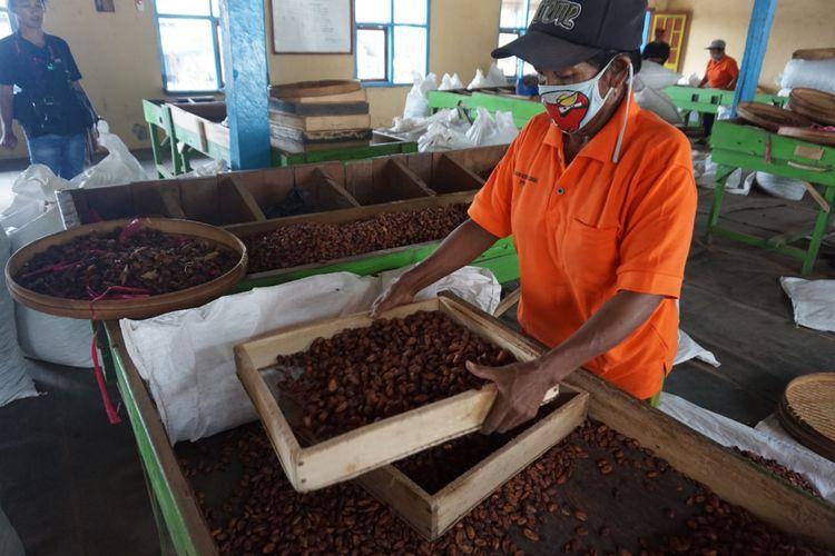 Pekerja pabrik kakao sedang menyortir biji kakao di pabrik kakao Glenmore Banyuwangi Sabtu (12/5/2018)
