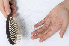 Makanan Sehat untuk Kurangi Kerontokan Rambut