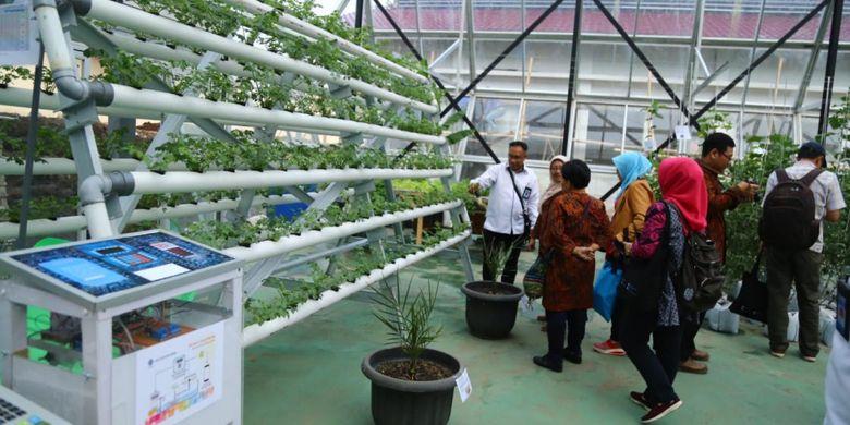 Dorong Tumbuhnya Pengusaha Agrobisnis, Kemnaker Gelar Pelatihan Vokasi