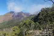 Hutan Bukit Kondo di Taman Nasional Gunung Rinjani Terbakar