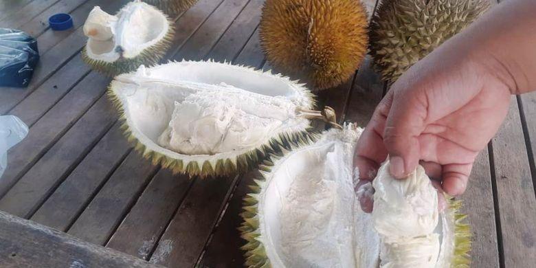 Pembeli menikmati durian di Jalan Perdagangan, Kota Lhokseumawe, Aceh, Sabtu (2/3/2019) malam.