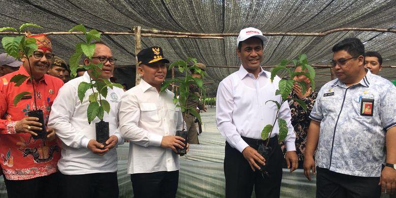 Lewat BUN500, Kementan Akan Kembalikan Kejayaan Perkebunan Indonesia