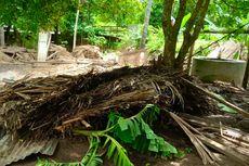 Banjir Bandang Landa Dua Desa di NTT, 5 Rumah Warga Hanyut
