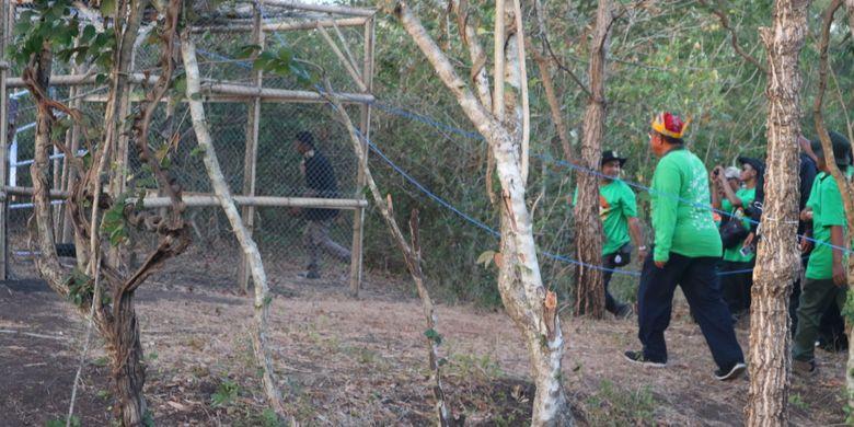 Menteri Koordinator Bidang Perekonomian, Darmin Nasution berjalan ke arah kandang satwa hasil sitaan dan penyerahan di Taman Nasional Baliran, Situbondo, Jawa Timur, Kamis (10/8/2017). Pelepasliaran satwa liar di Taman Nasional Baluran merupakan salah satu bagian acara perayaan Hari Konservasi Nasional 2017.