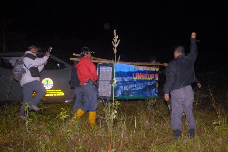 Para petugas menggotong kandang yang di dalamnya terdapat seekor anak macan tutul saat proses pelepasliaran di Taman Nasional Gunung Gede Pangrango, Sukabumi, Jawa Barat, Kamis (17/5/2018).