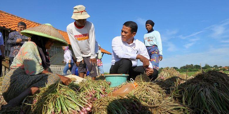 Menteri Pertanian (Mentan) Andi Amran Sulaiman saat mengunjungi petani bawang merah di Kabupaten Brebes, Jawa Tengah, Jumat (29/03/2019)