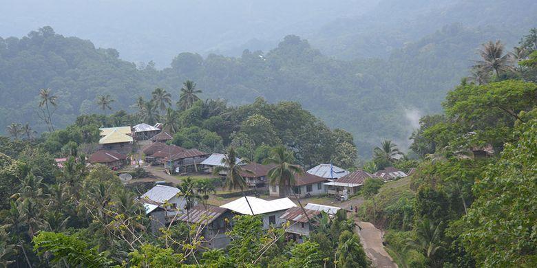 Kampung adat Wulu merupakan pindahan dari Kampung adat Wulu Nua Puu, Desa Wuliwalo, Kecamatan Mauponggo, Kabupaten Nagekeo, Flores, NTT, Rabu (27/2/2019) sebagai pusat tradisi Etu atau tinju adat di Kabupaten Nagekeo dan Ngada.