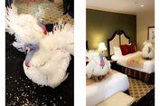 Beruntung, Dua Kalkun Ini Menginap di Hotel Bintang Empat