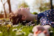 Nikmati Hamparan Bunga di Berbagai Taman Eksotis