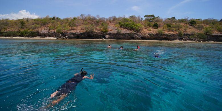 Wisatawan sedang snorkeling di sekitar Pulau Menjangan, Taman Nasional Bali Barat, Kabupaten Jembrana, Bali, Minggu (29/10/2017).