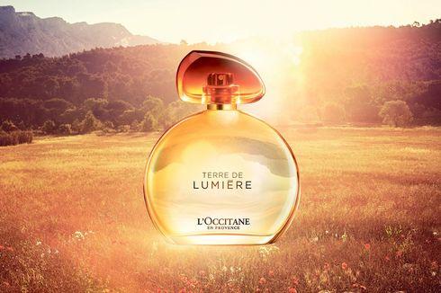 Menangkap Keindahan Cahaya Matahari Sore dalam Sebotol Parfum