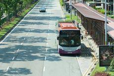 Tekan Polusi, Atap Bus di Singapura Ditanami Rumput