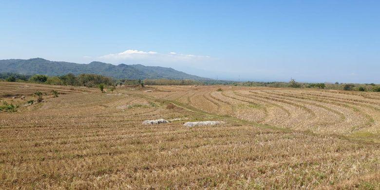 Ratusan hektar lahan sawah di Kabupaten Magetan, Jawa Timur mengalami kekeringan