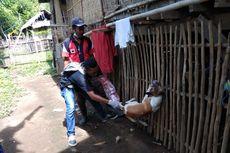 Dompu NTB KLB Rabies, 825 Warga Jadi Korban Gigitan Anjing Gila