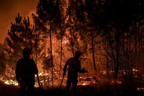 Kebakaran Hutan di Portugal, 1.700 Petugas Pemadam Dikerahkan