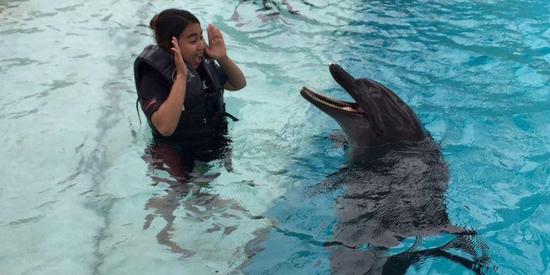 Berinteraksi langsung bersama Wei, lumba-lumba botol yang ada di Dolphin Island, Resort World Sentosa.
